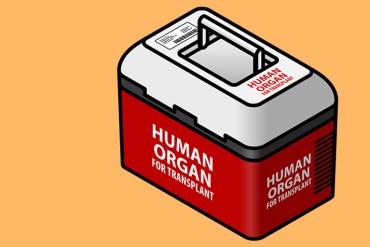 organ-transplant_770
