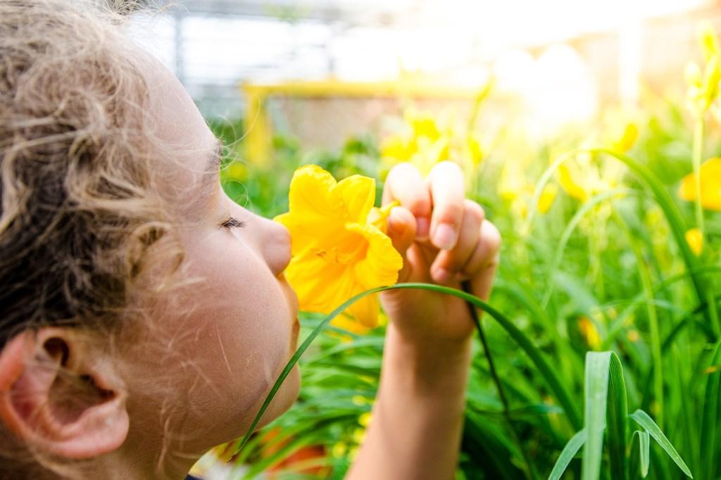A child smells a flower