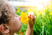 A child smells a flower